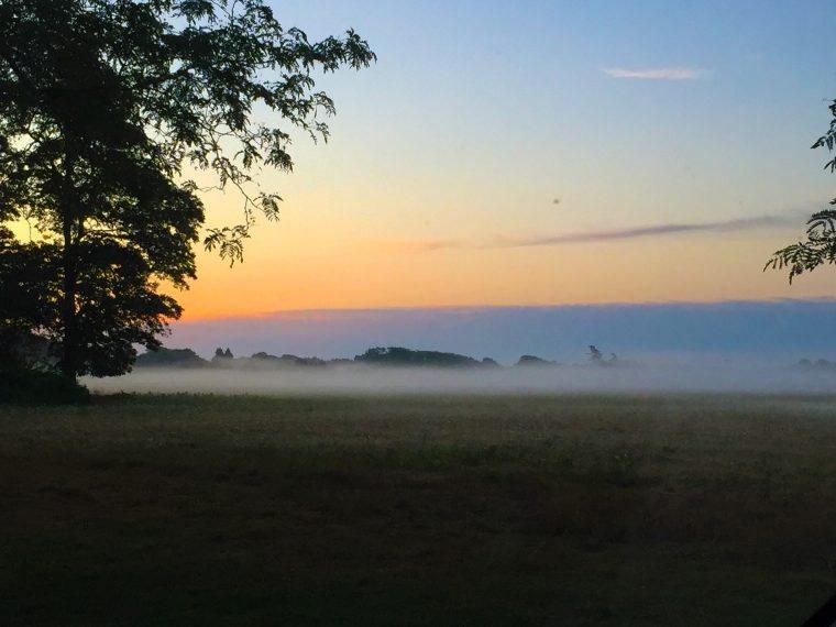 sunrisefog
