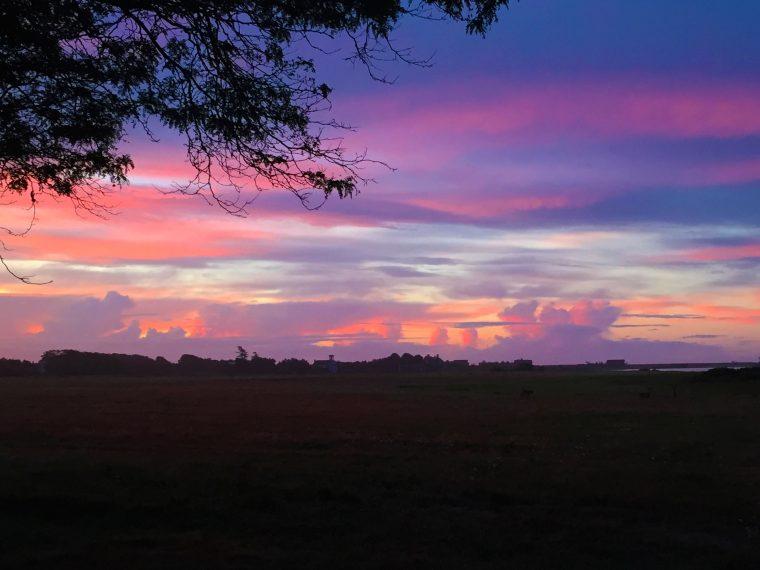 sunrisepink