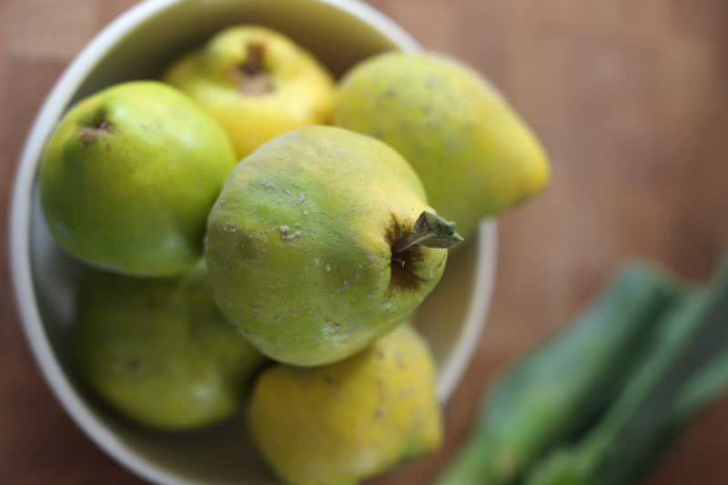 Cranberry Quince Jam